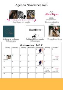 Agenda November 2018