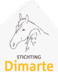 Stichting Dimarte